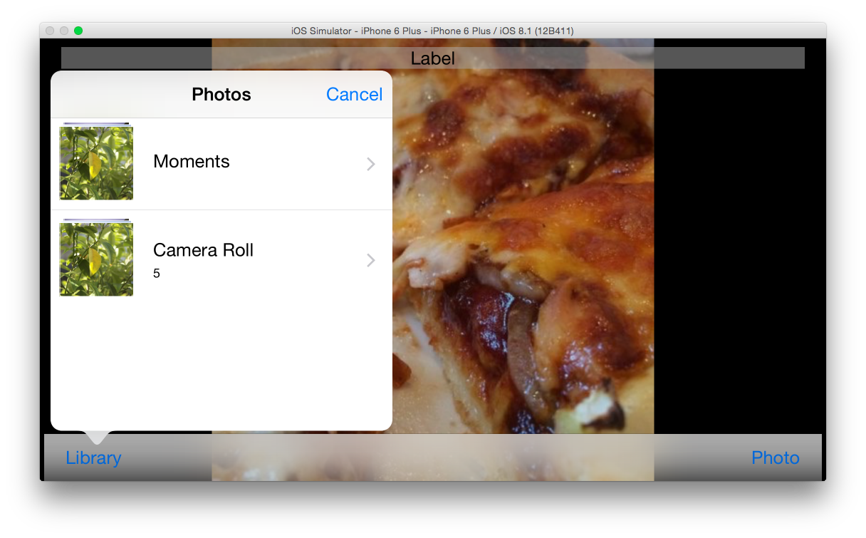 Swift Swift: Using the UIImagePickerController for a Camera and